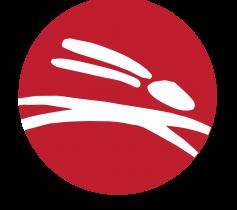 logo-white-300x276